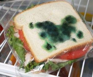 moldy sandwich_01