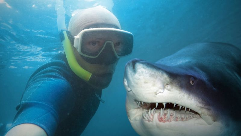 selfie and shark_02