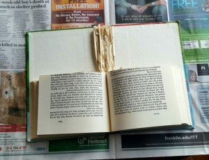Book torn in half