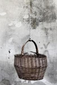 basket_01 cropped