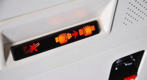 seatbelt cropped