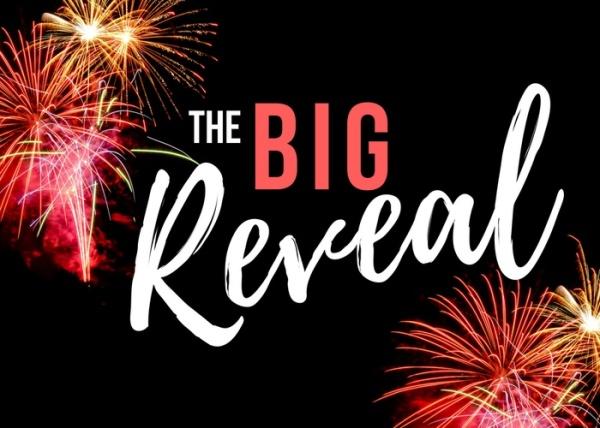 big reveal_02
