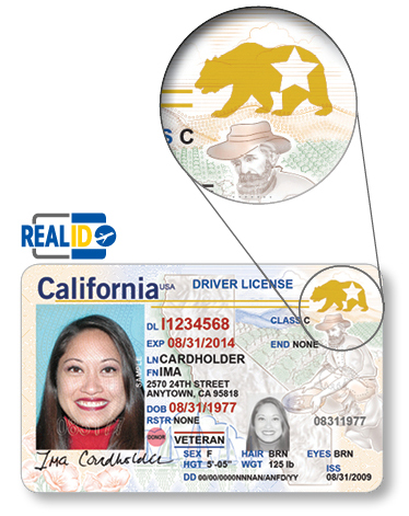 REAL+ID_DriverLicense (1)