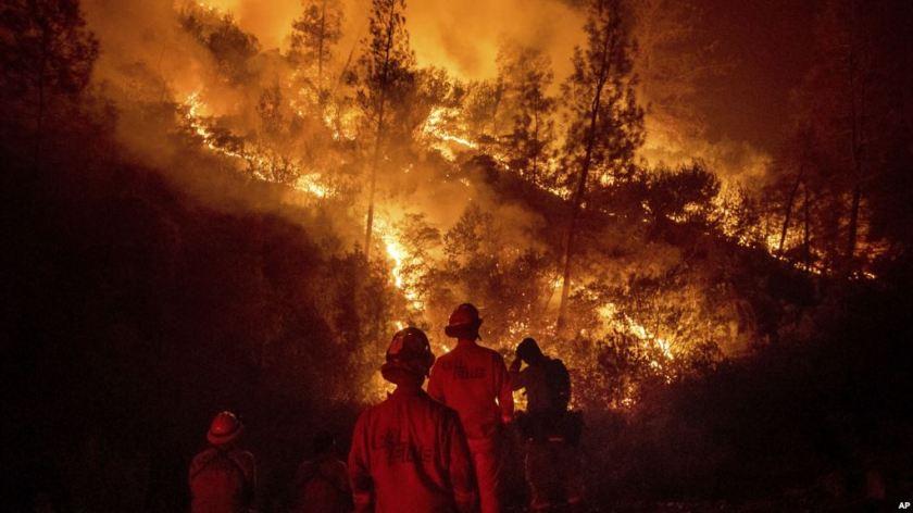 wildfires_02.jpg