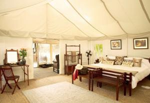 luxury camping_03