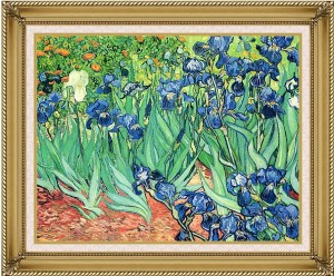 van gogh framed cropped