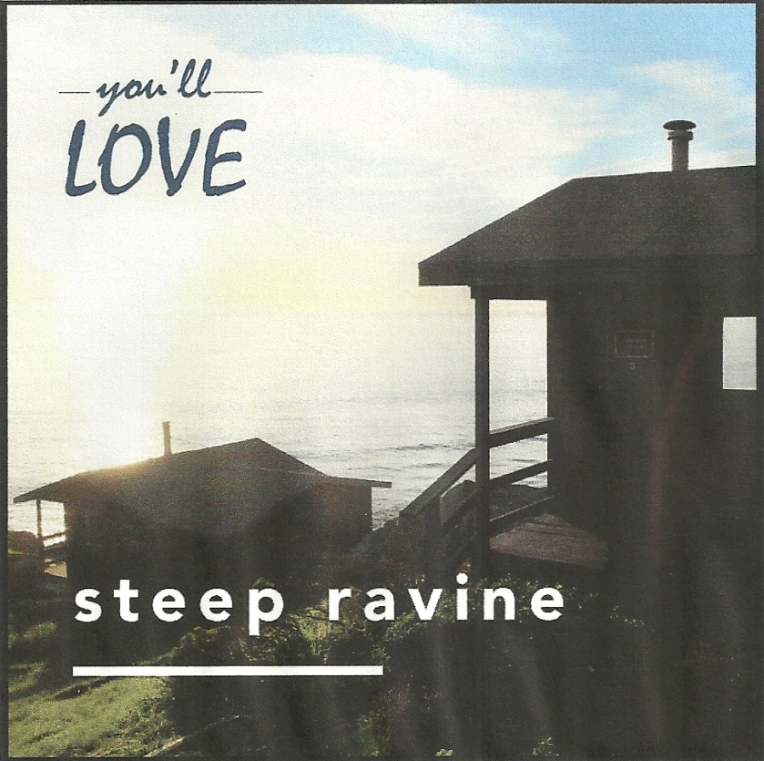 You'll love Steep Ravine