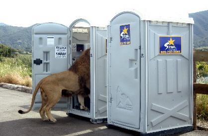 lion porta potty