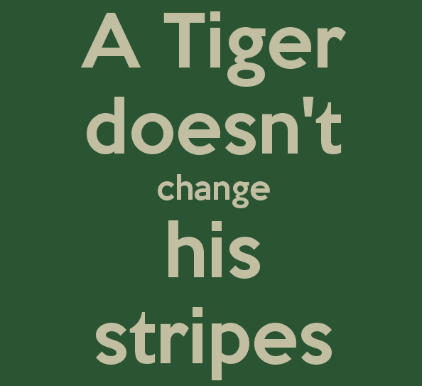 tiger-doesnt-change-his-stripes cropped