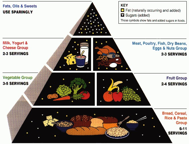 food pyramid cropped