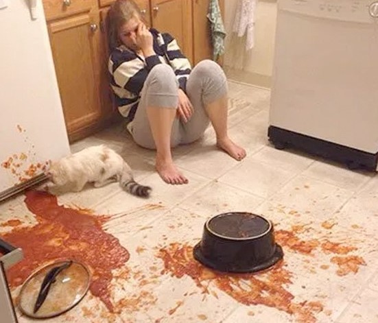 Kitchen-Disasters- cropped