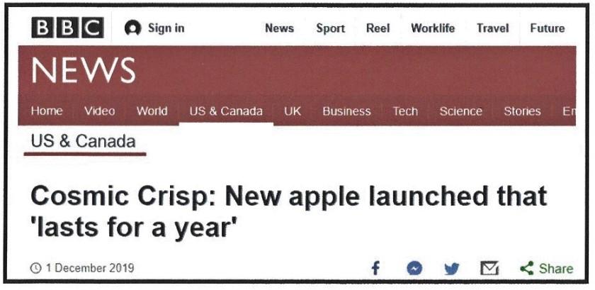 Headline BBC (2)