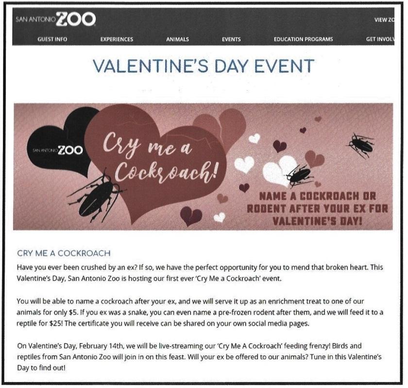 Zoo_02 (2)