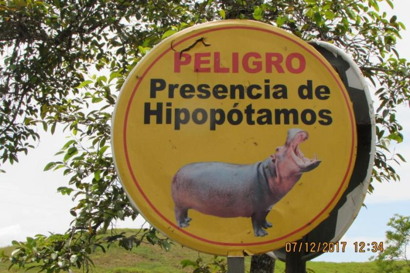 Danger presence of hippos