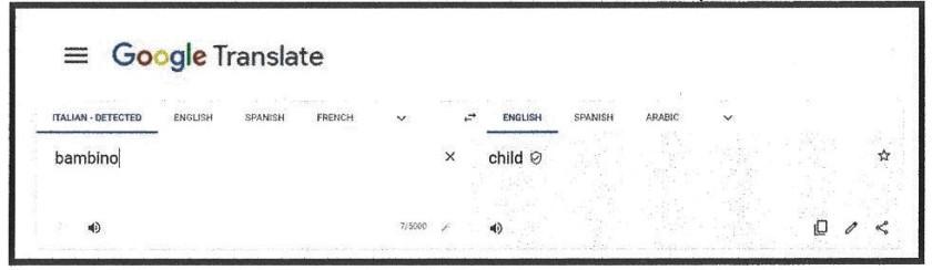 translate (2)