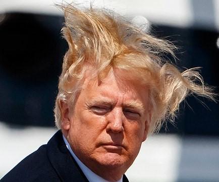 trump hair cropped