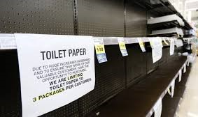 toilet paper cropped